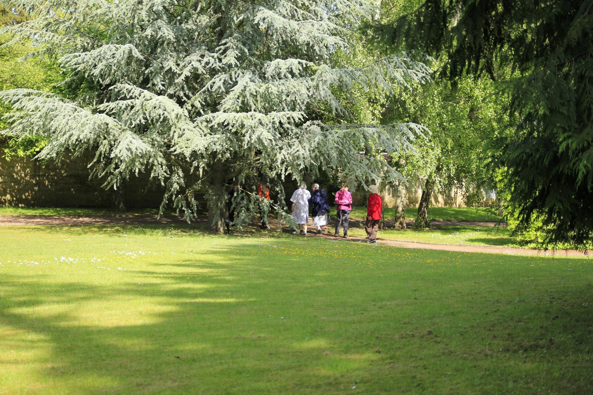 Activite promenade résidence sénior maison de retraite Ma Vallée Us Val d'Oise 95